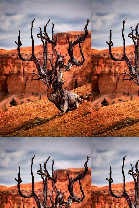 Tapeta Pixerstick Mrtvý Tree, Bryce Canyon - Amerika