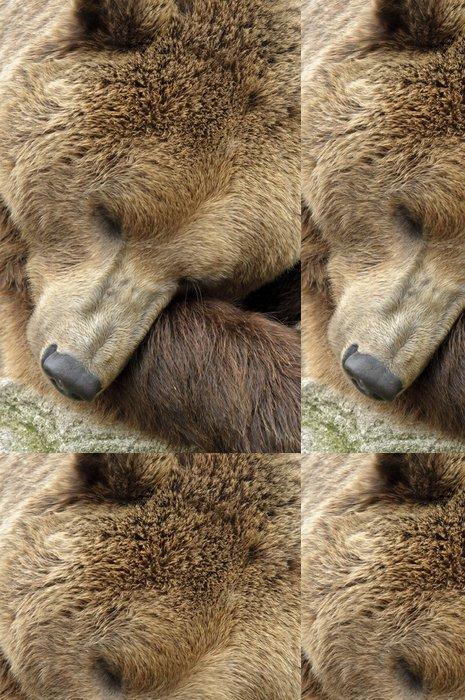 Tapeta Pixerstick Mužské medvěd hnědý - Témata