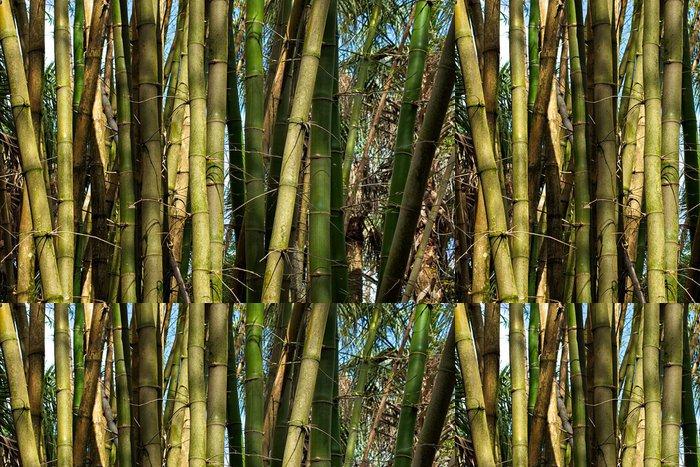Tapeta Pixerstick Náplast z bambusových stromů rostoucích divoce - Rostliny