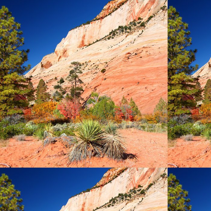 Vinylová Tapeta Národní park Zion geologie - Amerika