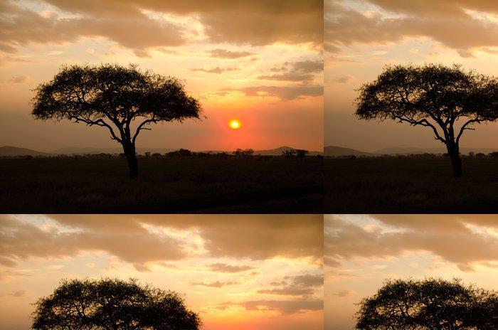 Tapeta Pixerstick Nastavení slunce vteřině s jedním akátu v Africe - Témata