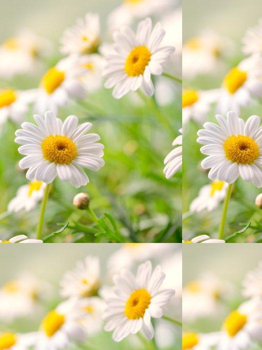 Tapeta Pixerstick Naure výkon - Květiny