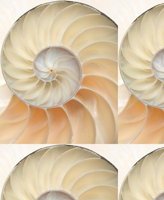 Tapeta Pixerstick Nautilus shell makro detailní - Vodní a mořský život