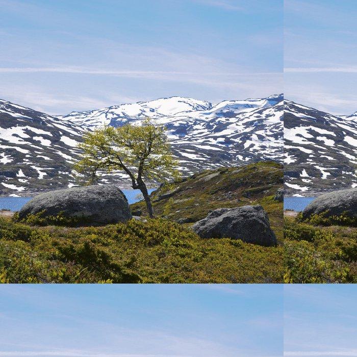 Tapeta Pixerstick Norsko - Evropa