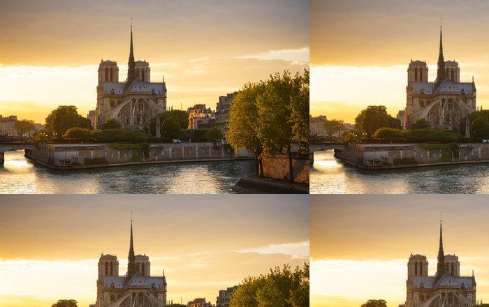 Vinylová Tapeta Notre Dame de Paris, Francie - Evropská města