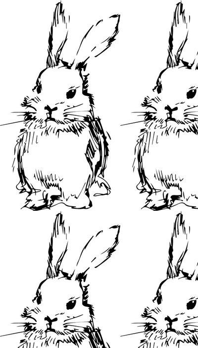 Vinylová Tapeta Obrázek králíka s dlouhýma ušima - Savci