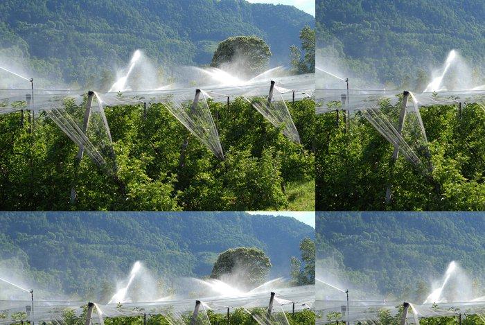 Tapeta Pixerstick Obstanbau - Zemědělství