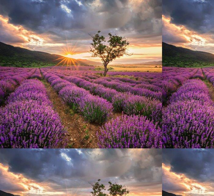 Tapeta Pixerstick Ohromující krajina s levandulí pole při východu slunce - Témata