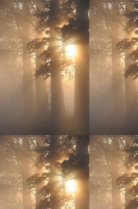 Tapeta Pixerstick Ohromující mlhavo krajina - Lesy