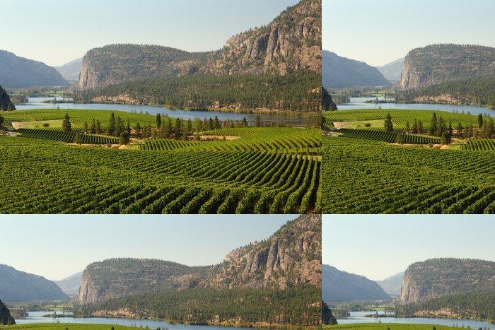 Tapeta Pixerstick Okanagan Valley Vineyard Scenic, British Columbia - Amerika