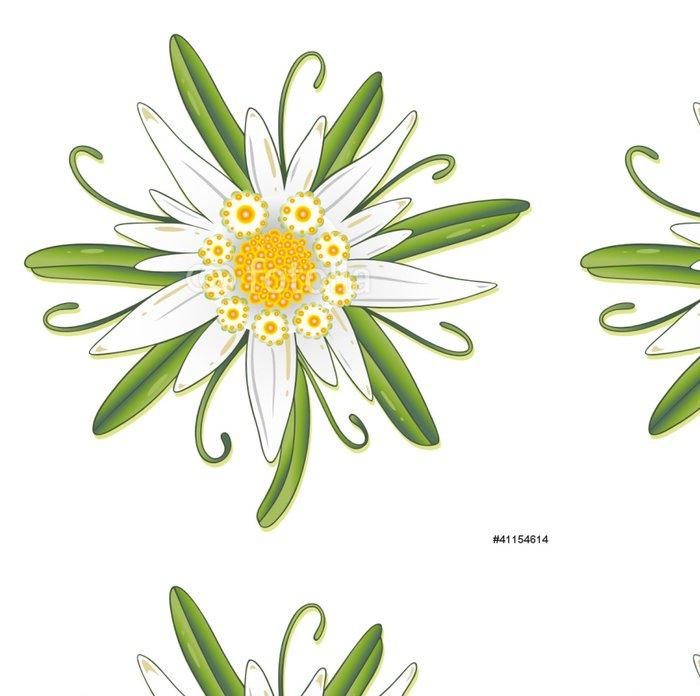 Vinylová Tapeta Oktoberfest, Edelweiss, Edelweiss, Flower - Květiny