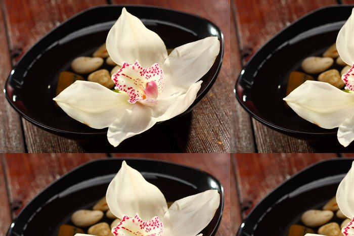 Tapeta Pixerstick Orchidej na talíři - Přírodní krásy