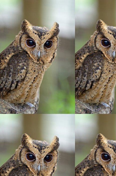 Tapeta Pixerstick Orientální výreček - Ptáci
