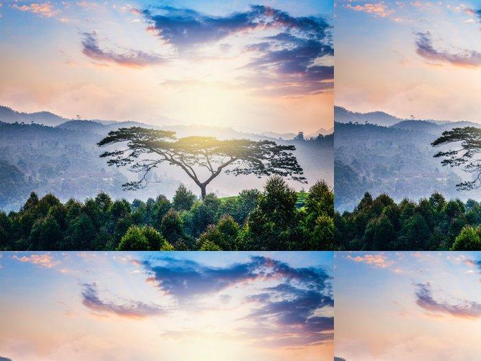 Tapeta Pixerstick Osamělý strom na východ slunce v kopcích - Asie