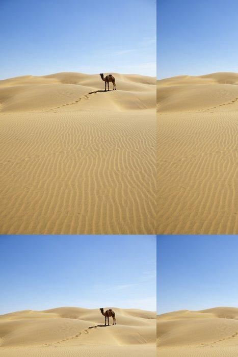 Tapeta Pixerstick Osamělý velbloud na písečných dun. Thar deser - Asie