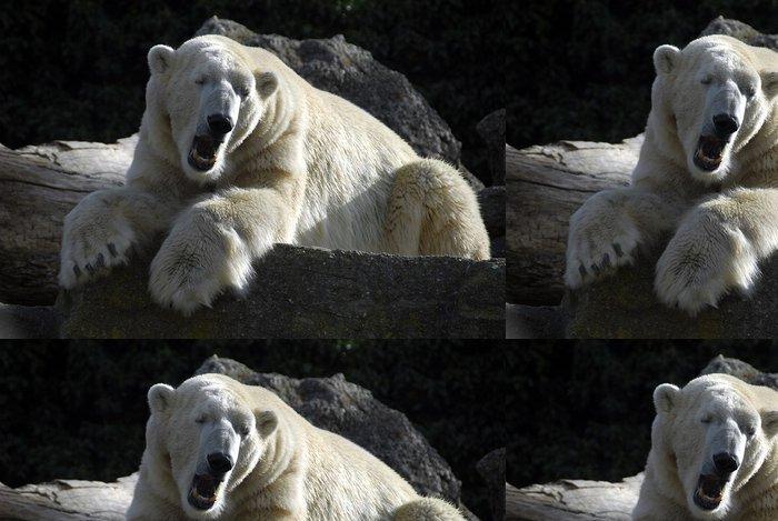 Tapeta Pixerstick Ospalý lední medvěd - Témata