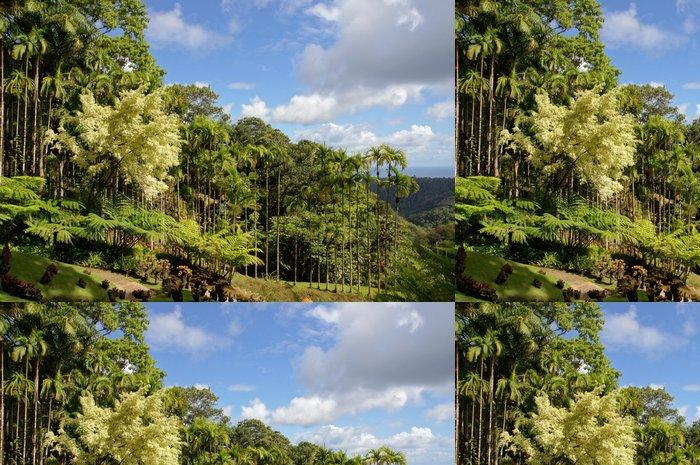 Tapeta Pixerstick Palmiers royaux du Jardin Balata - Prázdniny