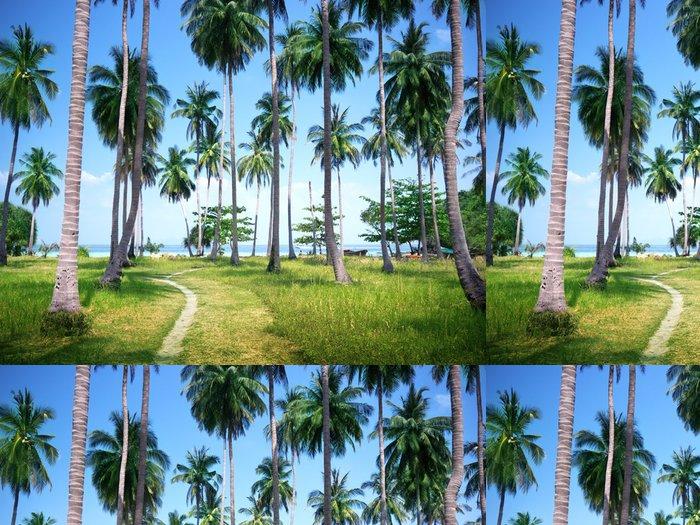 Tapeta Pixerstick Palmy na pláži ostrova Phi Phi, Thajsko - Roční období