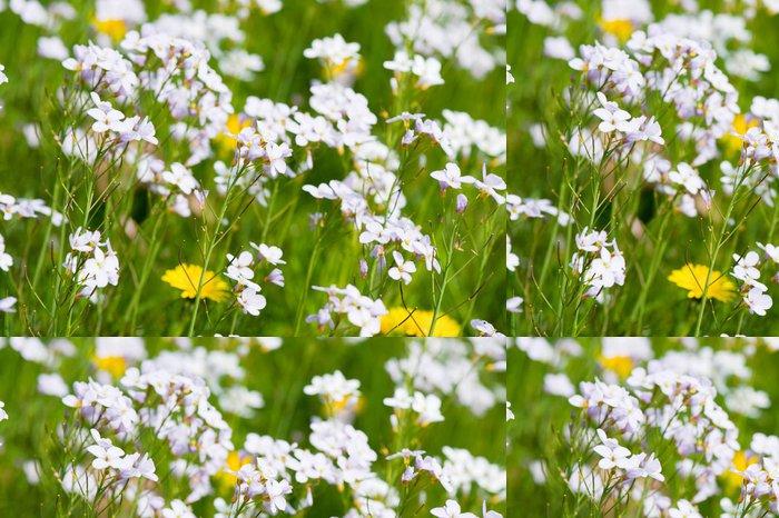 Tapeta Pixerstick Pampelišky a kukačka květiny - Květiny