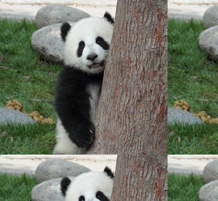 Tapeta Pixerstick Panda mládě skrýt nahlédnout za stromem - Témata