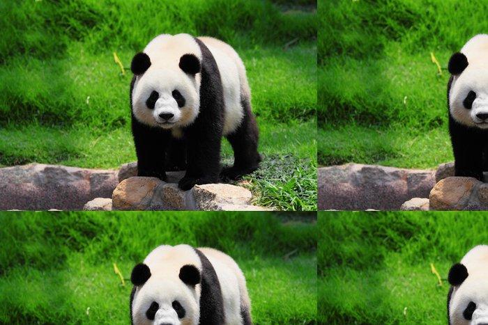 Tapeta Pixerstick Panda - Témata