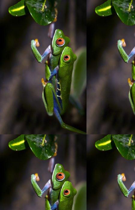 Tapeta Pixerstick Páření žáby - Ostatní Ostatní