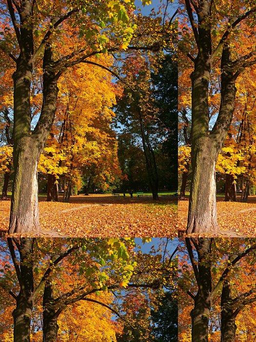 Tapeta Pixerstick Park na podzim šaty - Roční období