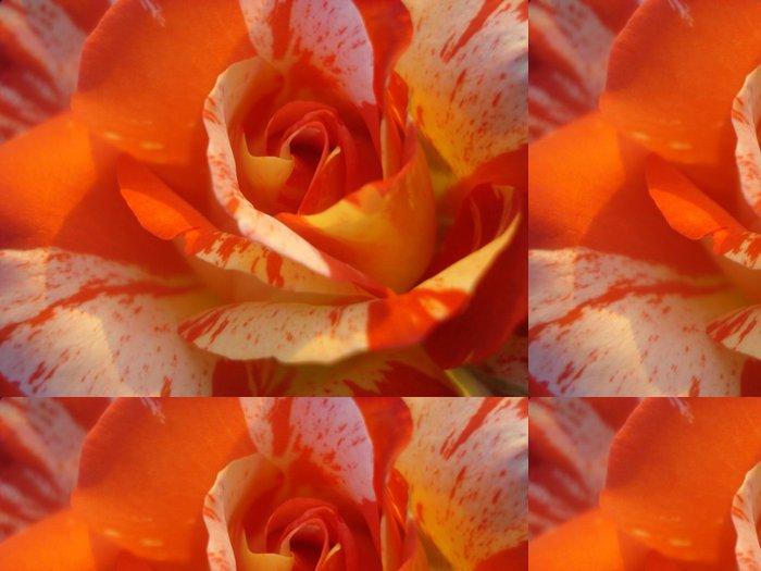 Tapeta Pixerstick Pestrobarevný oranžové růže - Štěstí