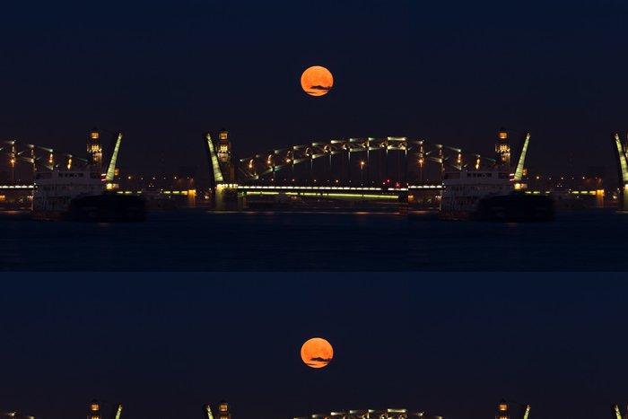 Tapeta Pixerstick Petr Veliký most v Petrohradě - Evropa