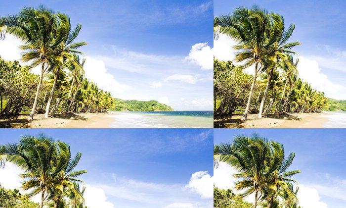 Tapeta Pixerstick Pinfold Bay, Tobago - Amerika