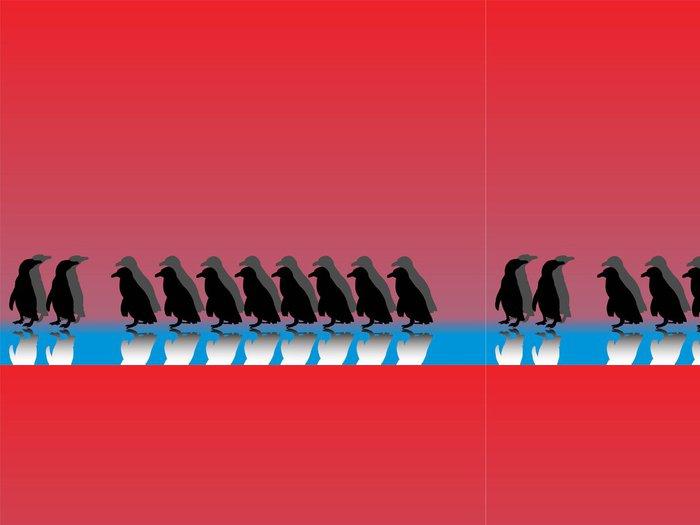 Tapeta Pixerstick Pinguinreihe mit Spiegelungen und farbigem pozadí - Ptáci