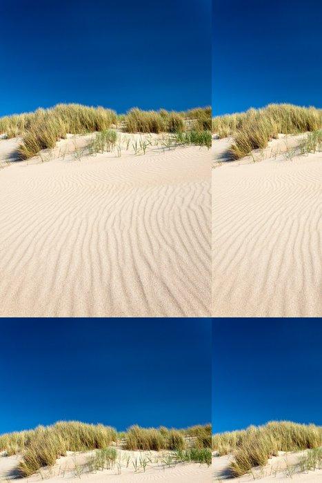 Tapeta Pixerstick Písečné duny s pláží trávy v Nizozemsku - Evropa