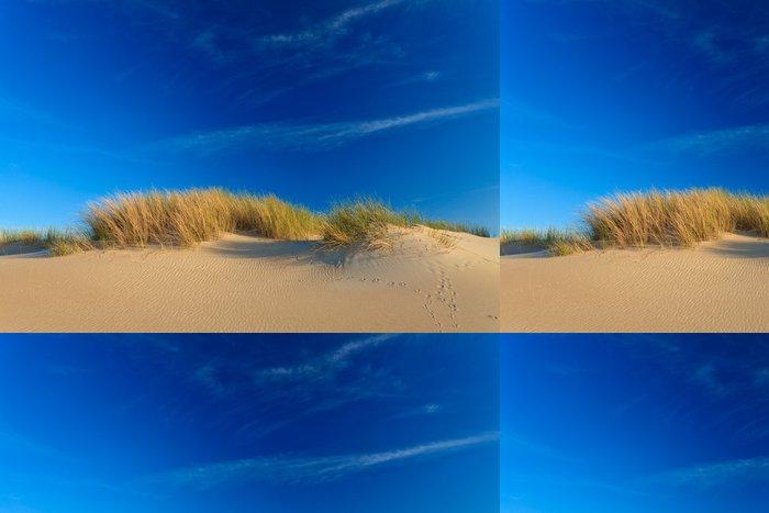 Tapeta Pixerstick Písečné duny s přilbou trávou - Evropa