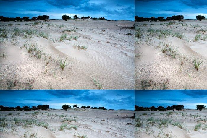 Vinylová Tapeta Písečné duny ve večerních hodinách - Roční období