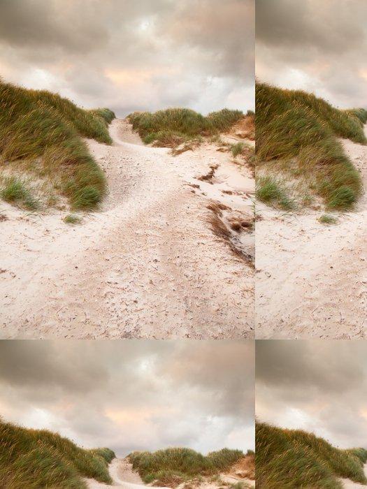 Tapeta Pixerstick Písek cesta přes duny krajině pod tmavou zatažené obloze - Evropa