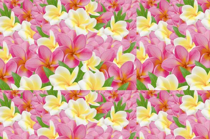 Tapeta Pixerstick Plumérie - Květiny