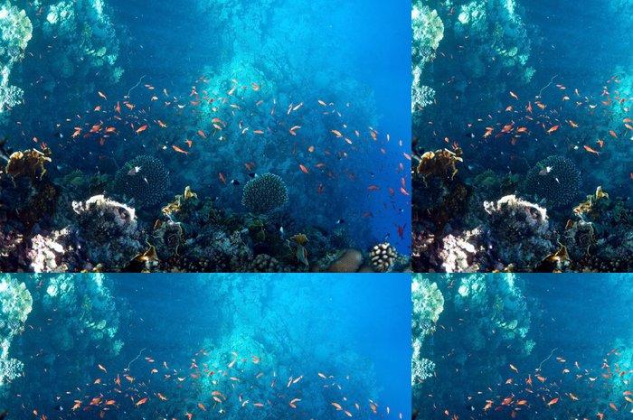 Tapeta Pixerstick Podvodní krajina - Podvodní svět