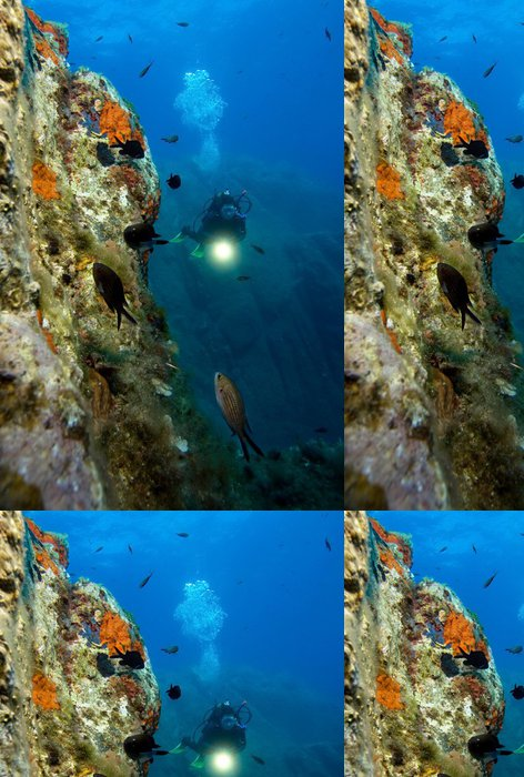 Tapeta Pixerstick Podvodní svět. Divers a ryby - Vodní sporty