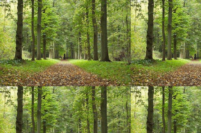 Vinylová Tapeta Podzim v parku - Roční období