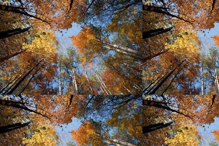 Tapeta Pixerstick Podzim - Přírodní krásy