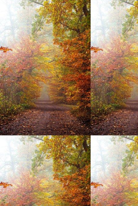 Tapeta Pixerstick Podzimní barvy v lese - Témata
