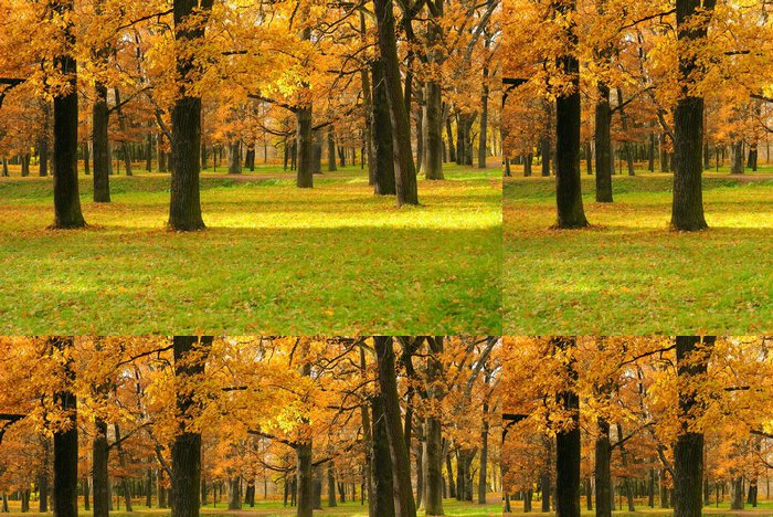 Tapeta Pixerstick Podzimní krajina v parku - Roční období