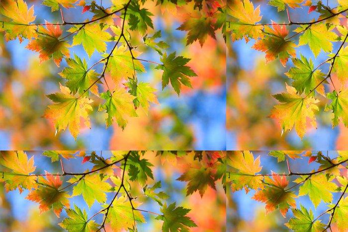 Tapeta Pixerstick Podzimní landscape.10 - Roční období