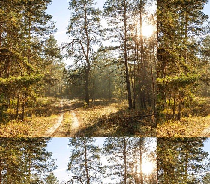 Tapeta Pixerstick Podzimní les - Roční období