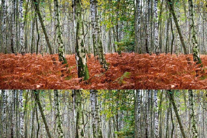 Tapeta Pixerstick Podzimní les - Témata