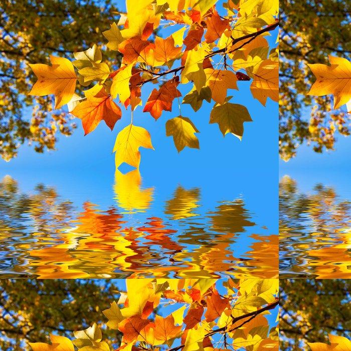 Vinylová Tapeta Podzimní listí, které odrážejí ve vodě - Témata