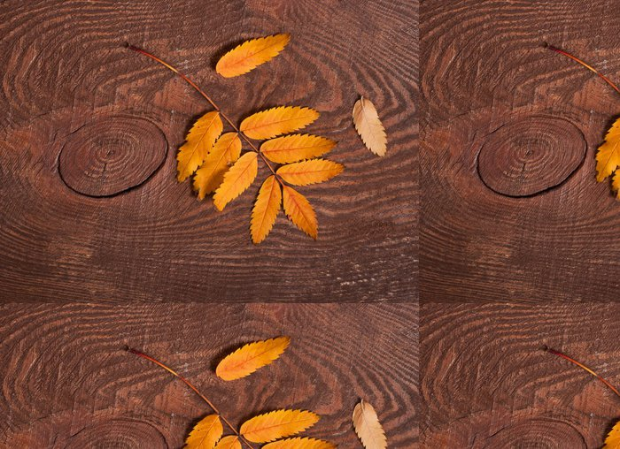 Tapeta Pixerstick Podzimní listí Rowan - Roční období