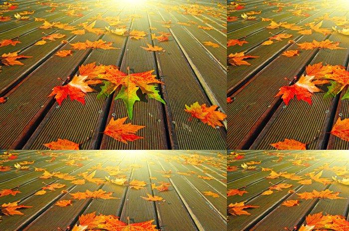 Tapeta Pixerstick Podzimní listí sluneční paprsky - Témata