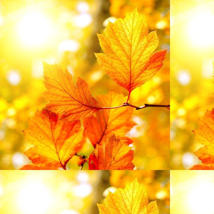 Tapeta Pixerstick Podzimní listí - Témata