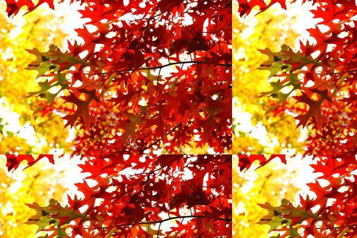 Tapeta Pixerstick Podzimní listy na pozadí - Témata